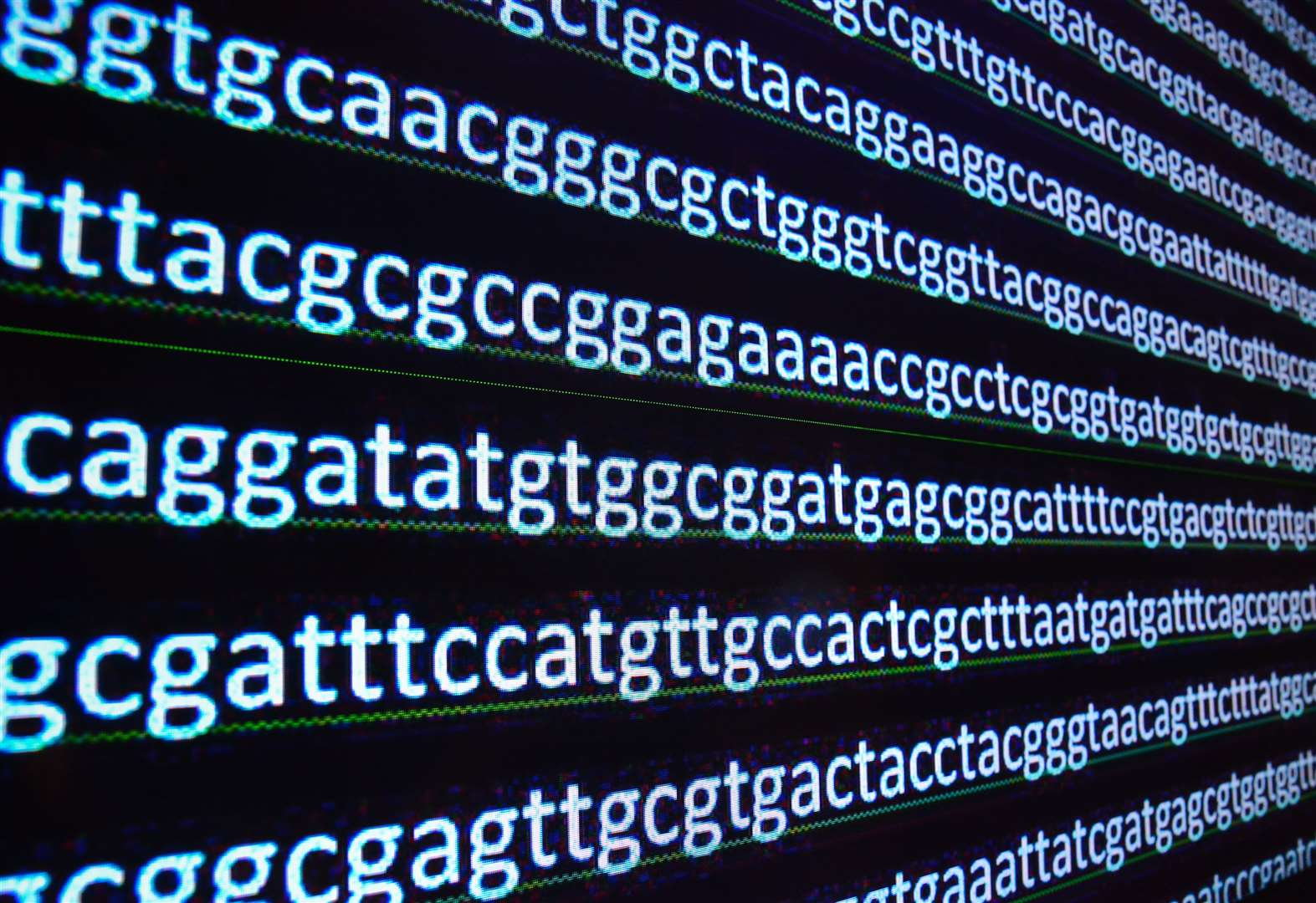 Would 'bioinformatics apprentice at Illumina' suit you?