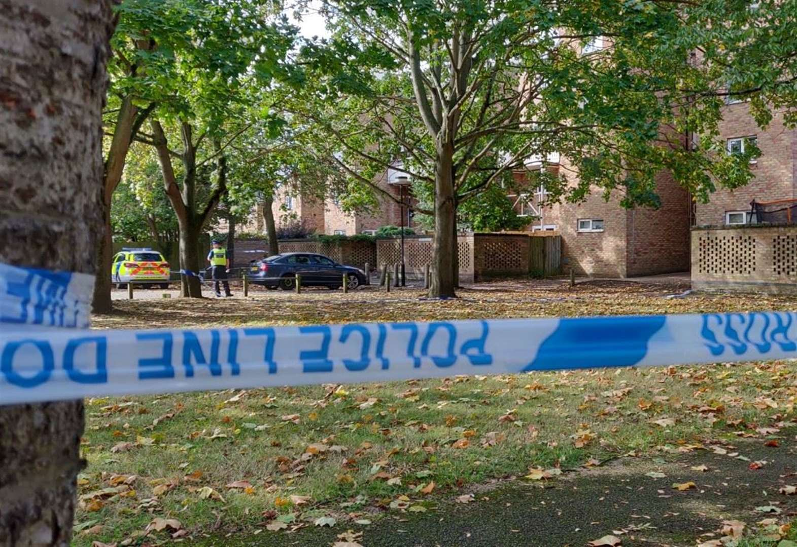 Man stabbed in Sackville Close, Cambridge