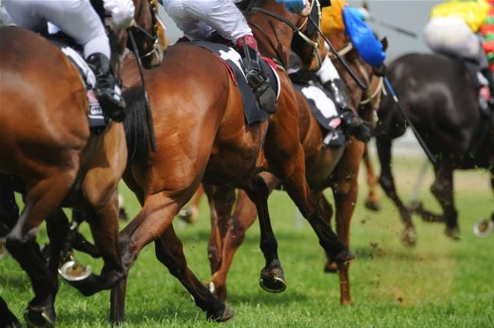 Win tickets to the Qipco Guineas Festival at Newmarket