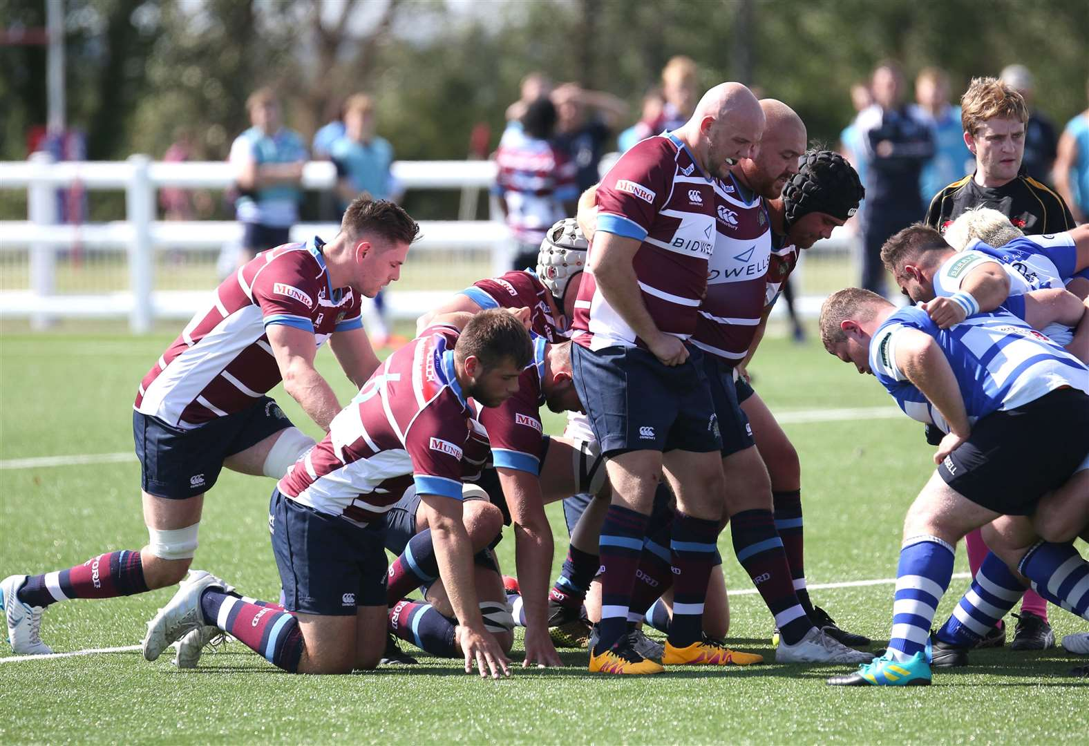 Shelford plans take shape ahead of London League 1N campaign