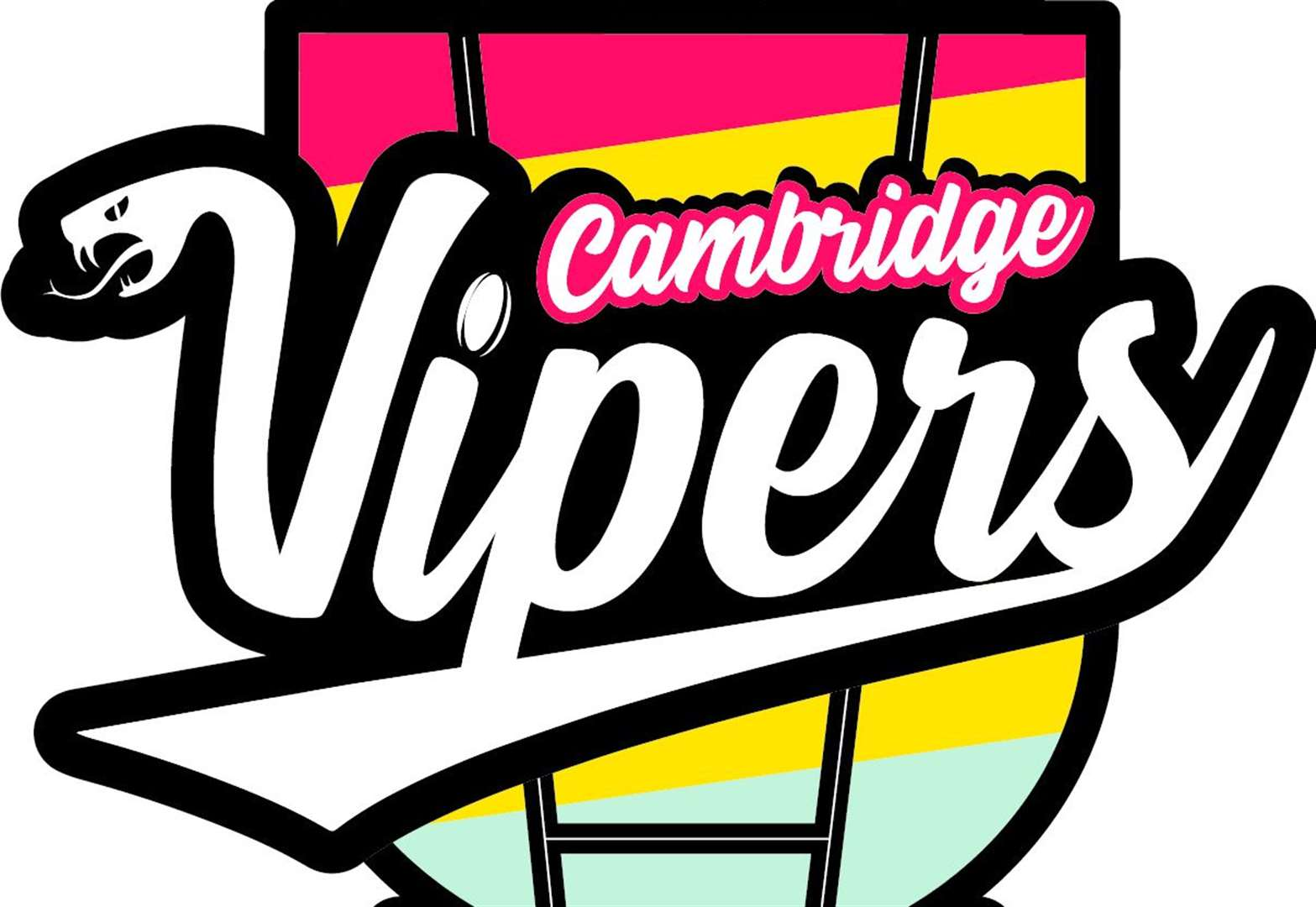 Cambridge Rugby Club academy to have Vipers brand