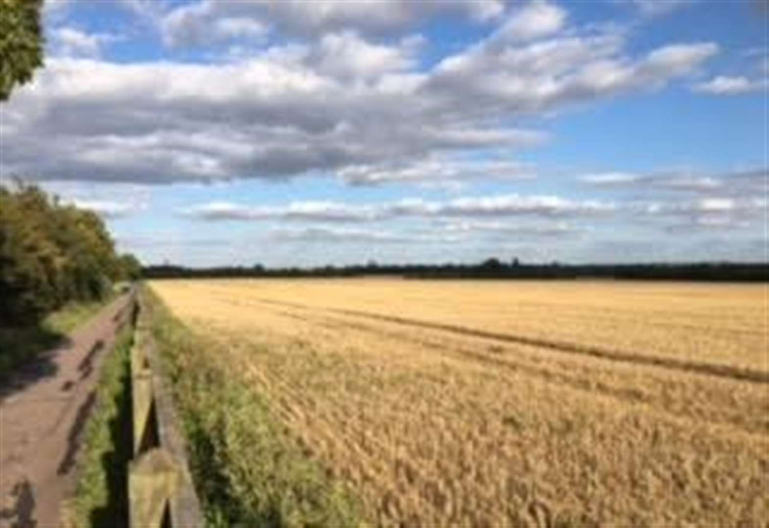 Cambridgeshire countryside walk 'under threat' from busway