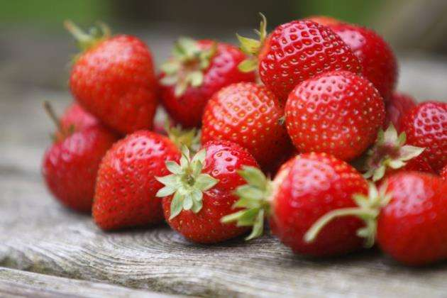 Strawberries picked by Dogtooth Technologies robots will retain a little bit of their stalk