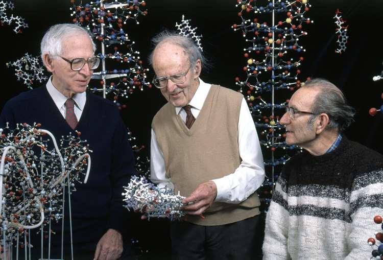 Aaron Klug, Max Perutz and Cesar Milstein Picture: MRC LMB (5725312)