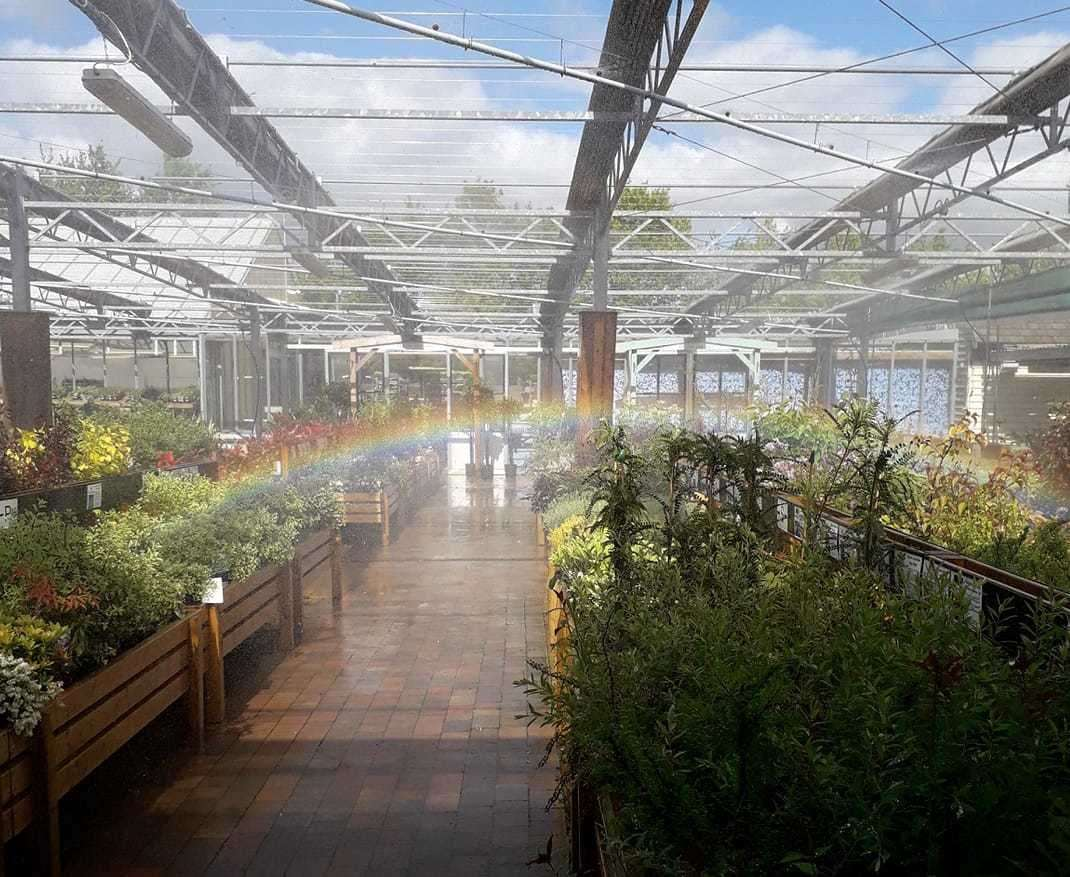 Rainbow arrives as Scotsales reopens. Picture: Kirsty Willette (34690873)