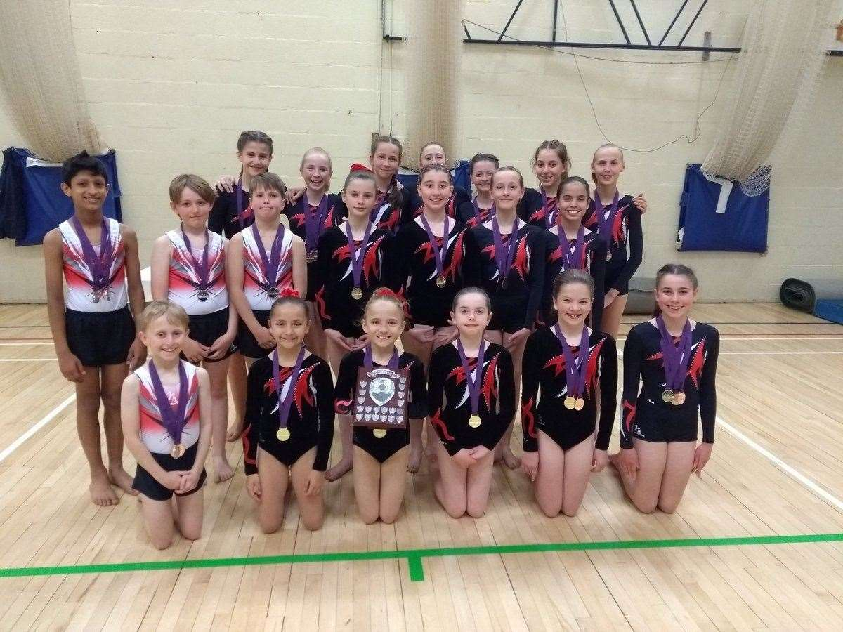 St Faith's gymnastics squad at the Midland Championships. Picture: Kelly Pangalos (9357929)