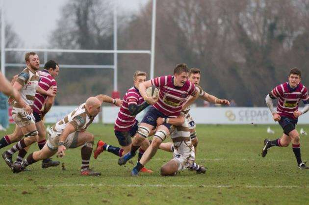 Shelford Rugby Clubs Teddy Hepworth. Picture: Cat Goryn