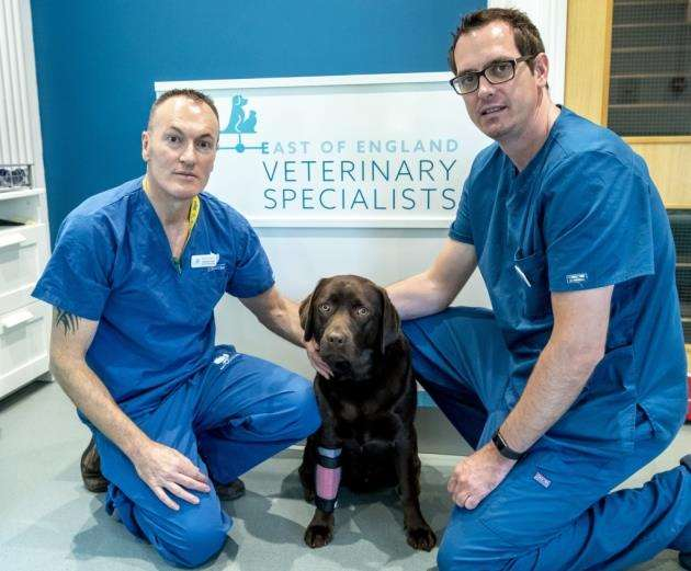 East of England Veterinary Specialists at Wimpole, from left Martin Owen and Mark Bush. Picture: Keith Heppell