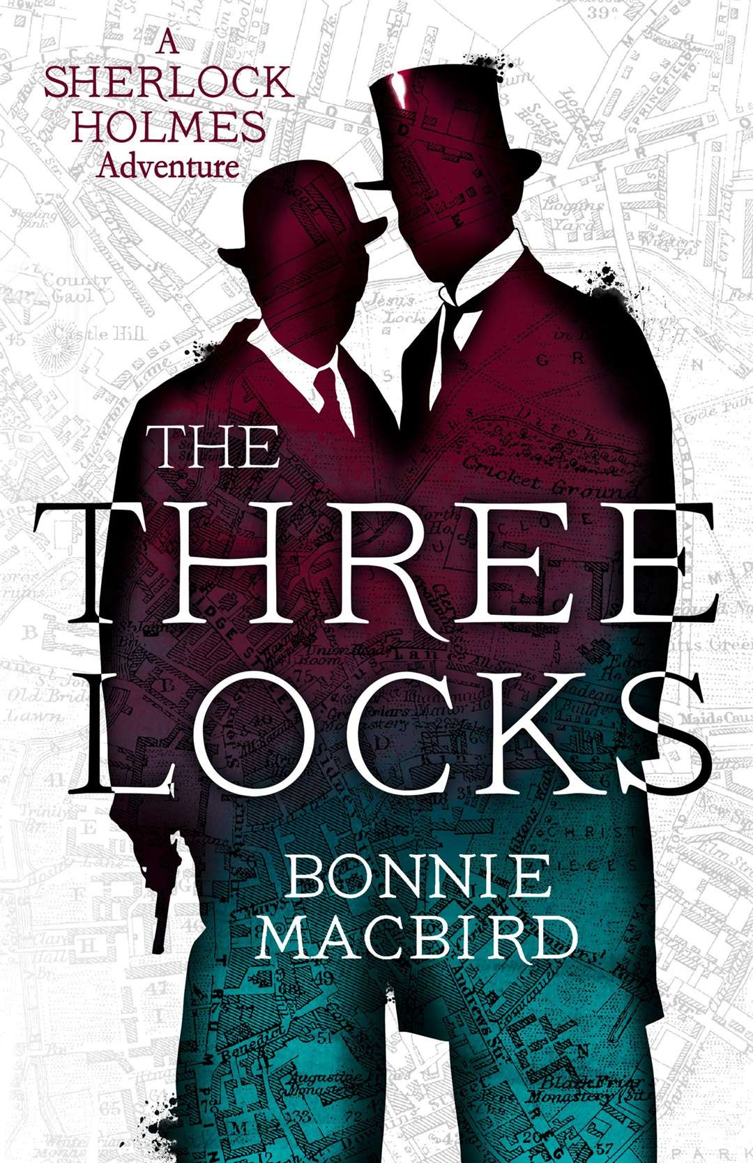 Bonnie MacBird's new book, The Three Locks
