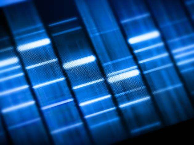 DNA sequencing is now a much more affordable technology