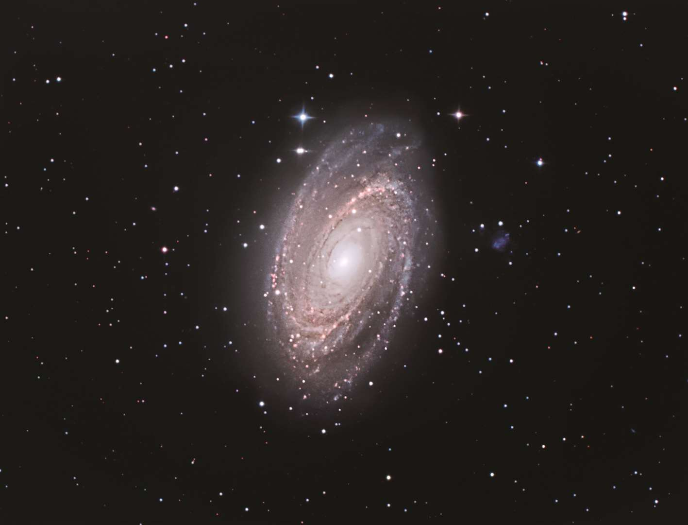 Featuring in the book 2020 Stargazing, Craig Howman's image shows M81, a beautiful spiral galaxy nestling among the stars of Ursa Major. It was captured with a Sky-Watcher 300PDS telescope using a Canon 1100D at ISO 400. It is a 43-exposure image, with each lasting 12-19 minutes, giving a total exposure time of 10 hours and 2 minutes. Picture: Galaxy Picture Library/Craig Howman (18337396)