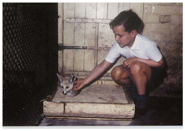 Tony Whitten as a child at London Zoo. Picture: Andy Whitten
