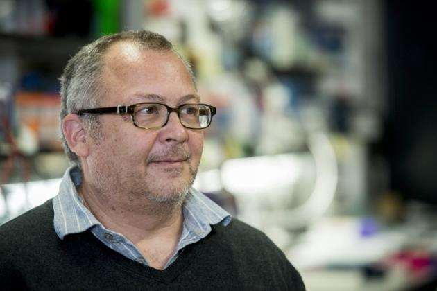 Greg Hannon, director of CRUK Cambridge Institute. Picture: Keith Heppell