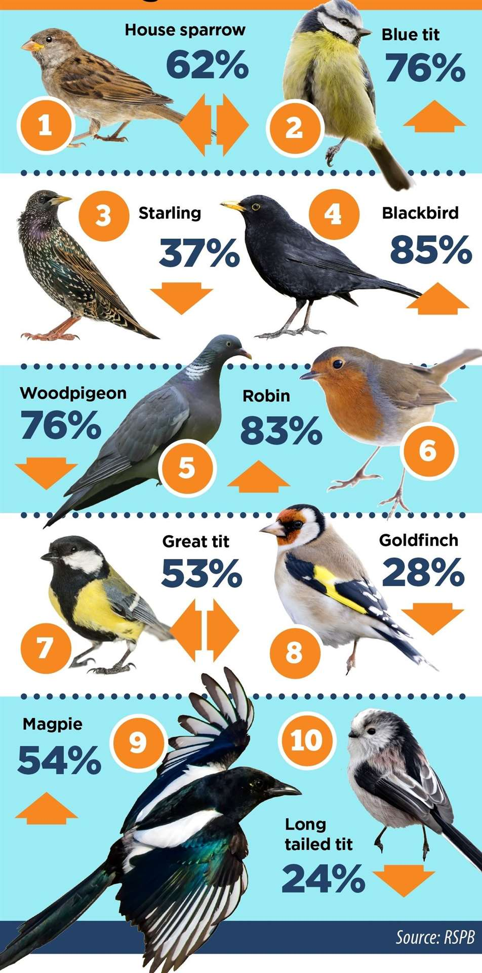 The Cambridgeshire results from the Big Garden Birdwatch (46212857)