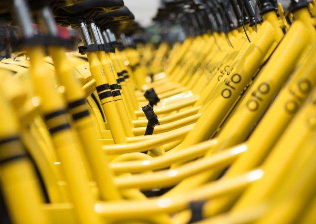 Rows of yellow OFO station-free shared bikes