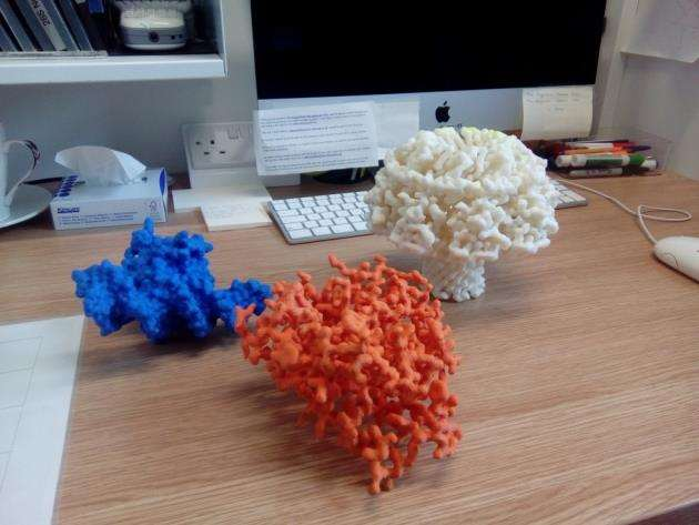 3D printed proteins will be on display at MRC LMBs Open Day