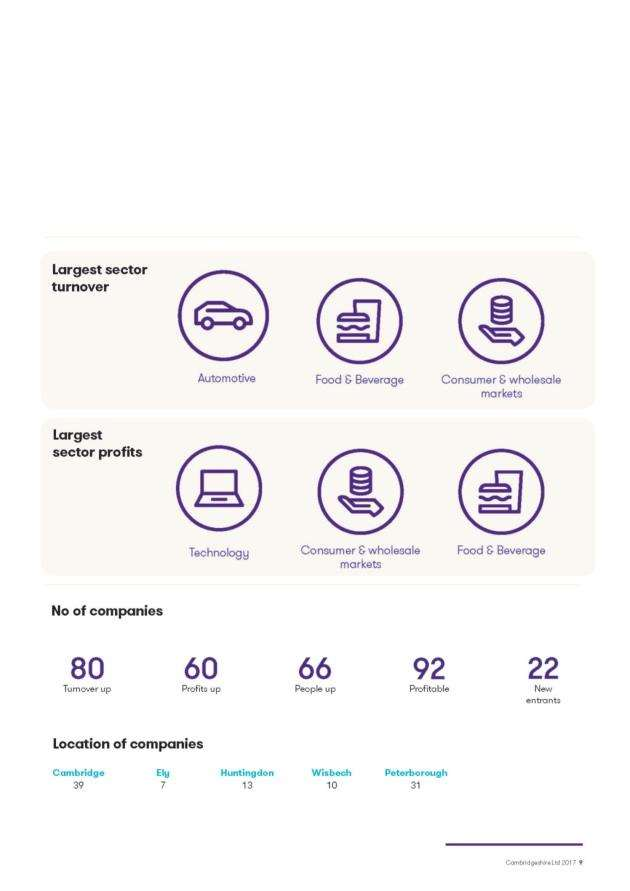 An overview of the performance of the top 100 companies in the Cambridgeshire Ltd report from GrantThornton